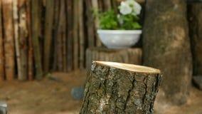 Lumberman que desbasta o movimento lento de madeira vídeos de arquivo