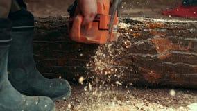 Lumberman que usa a lenha do sawing da serra de cadeia video estoque