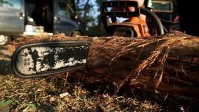 Lumberman que usa logs do sawing da serra de cadeia para a lenha vídeos de arquivo