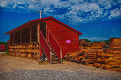 Lumbermill in Ontario, Canada. Pine logs stacked at lumber mill in Ontario, Canada Royalty Free Stock Image