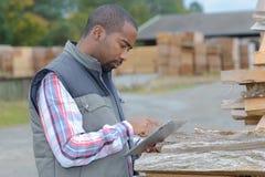 Lumberyard urzędnik sprawdza produkty Obrazy Stock