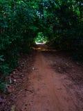 Lumière à la destination Photo libre de droits