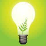 lumière écologique d'ampoule Photographie stock libre de droits