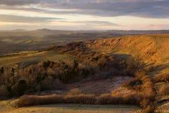 Lumière d'or à la colline d'Eggardon, Dorset, R-U Photo stock