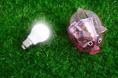 Lumière d'ampoule et une tirelire sur la pelouse images stock