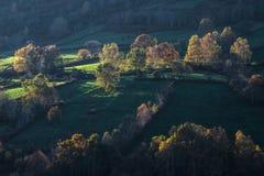 Lumière d'automne sur des champs et des forêts Photos stock