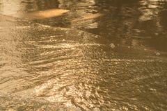 Lumière d'or se reflétant outre d'une vague d'eau à la mer et du sable sur le coucher du soleil photographie stock
