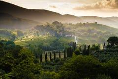 Lumière de la Toscane une brume Photographie stock libre de droits