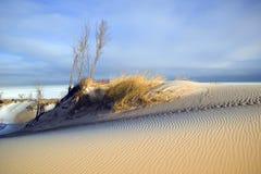 Lumière de matin sur la dune de sable, l'hiver Photo stock