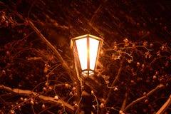 Lumière de nuit Images stock