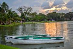 Lumière de Sun de soirée et bateau de rangée en parc de lac Photographie stock libre de droits