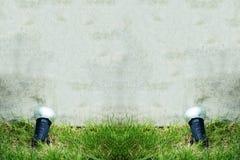 Lumière de tache sur l'herbe Photographie stock libre de droits