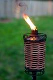 Lumière de torche Image stock