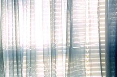 Lumière du jour lumineuse par les cisaillements bleus Images stock