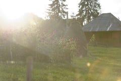 Lumière du soleil dans le jardin, Arieseni, Roumanie Images stock