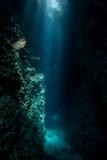Lumière du soleil et grotte foncée photo libre de droits