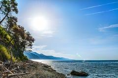 Lumière du soleil non-urbaine de nature d'été de région boisée de couleurs de paysages Image stock