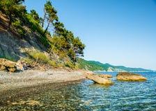 Lumière du soleil non-urbaine de nature d'été de région boisée de couleurs de paysages Photo stock