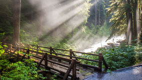 Lumière du soleil par la vapeur photo stock
