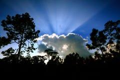 Lumière du soleil par le nuage. Images libres de droits