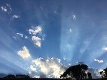 lumière du soleil rayonnante Photo libre de droits
