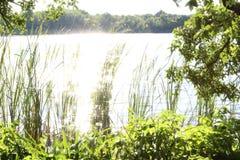 Lumière du soleil sur l'eau Image libre de droits