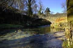 Lumière du soleil sur la rivière images libres de droits