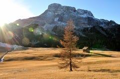 Lumière du soleil val d'hiver de Pusteria de dolomite Image libre de droits