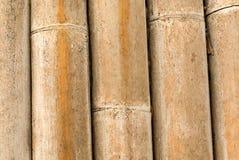 surface et texture en bambou de tronc image stock image. Black Bedroom Furniture Sets. Home Design Ideas