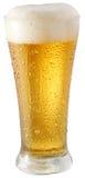 lumière en verre de bière photo libre de droits