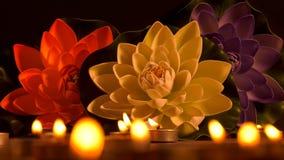Lumière et fleurs romantiques de bougie banque de vidéos