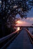Lumière magique de rivière Photographie stock libre de droits