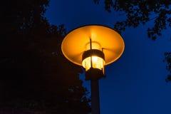 Lumière orange de vue de nuit de réverbère avec l'arbre photographie stock libre de droits