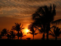 Lumière rouge de matin à l'île de sanibel Images libres de droits