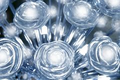 Lumière rougeoyante bleue transparente de lampe en verre de roses Photos stock