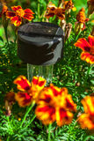 Lumière solaire de jardin Photographie stock