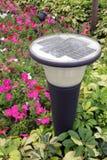 Lumière solaire de pelouse Images libres de droits