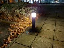 Lumière sur le chemin avec des feuilles images stock