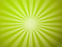 Lumière verte de Sun Images stock