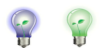 Lumière verte et bleue Photographie stock libre de droits