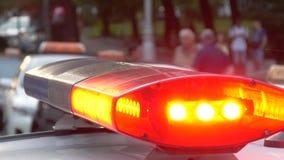 Lumières clignotantes de police sur la rue de ville banque de vidéos