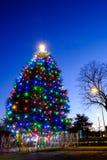 Lumières colorées sur le grand arbre de Noël Photo libre de droits