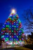 Lumières colorées sur le grand arbre de Noël Images libres de droits