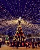 Lumières décembre de fièvre de Noël photographie stock libre de droits