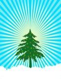 Lumières d'arbre de Noël Images stock