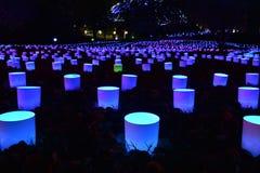 Lumières de lueur de jardin dans le jardin botanique du Missouri Images libres de droits