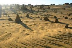 Lumières de matin au désert de sommets Parc national de Nambung cervantes Australie occidentale l'australie photographie stock libre de droits