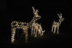 Lumières de Noël Images libres de droits
