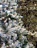 Lumières de Noël accrochant dans un arbre Image stock