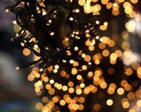 Lumières de Noël accrochant dans un arbre Images stock